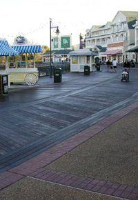 Ipe boardwalk at Walt Disney World