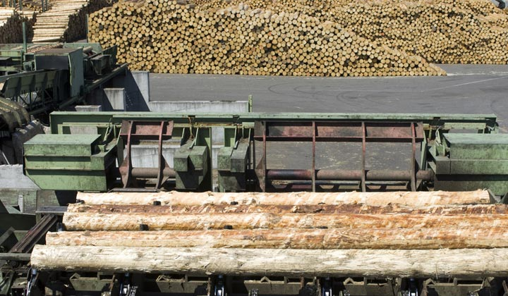 lumber mill operation